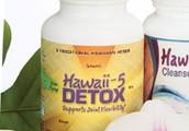 Detox Preparation Plan and Free Detoxification Diet