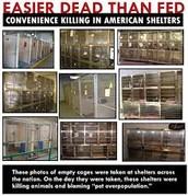 """""""Easier dead than fed"""""""