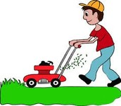 With our service, your lawn will be cut fast and splendid.