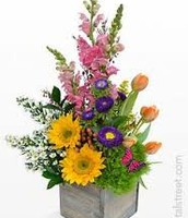 Purple and Pink arrangment with accent yellow sunflowers