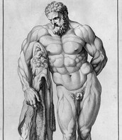 Hercules well developed muscles