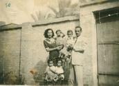 המשפחות