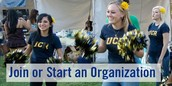 Start or join amazing organizations & join the family !