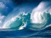 Thank you ocean!