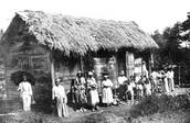 Wood Plank House, St. Vincent, West Indies, ca. 1898