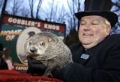 Happy Groundhog Day or Is It?