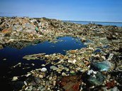 Ocean Completely covered in trash!