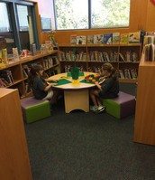 Wilderness Oaks ES Library