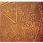 These are ancient geoglyphs in the nazca desert in Peru