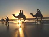 ¡Desierto del Sahara!