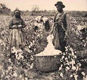 Slaves were forced to clean clothes without help.
