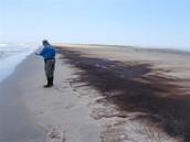 ים של נפט