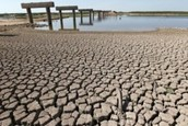 The Negative Effects of Drought