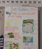 Anchor Chart to Support Text Features
