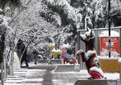 The cold weather in Chihuahua