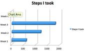 Steps I took