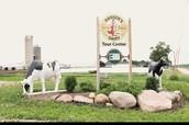 Hansens dairy