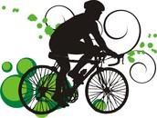 3rd Annual Bike Night
