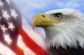 I am the state bird