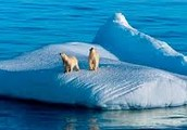 Sea levels Rising, and melting ice