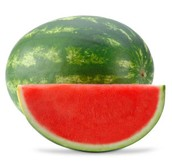 How do Scientist grow seedless watermelons?