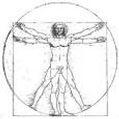 This is the Vitruvian Man