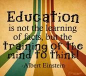 Wise words from Albert Einstein!