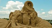 Elephant sand