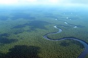 Facts about the Congo Basin