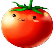 tomates- tomatoes