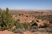 Navajo mountain trail