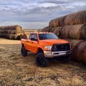 Dodge vs