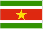 The Flag of Suriname