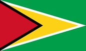 The Guyanese flag