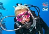Independent Padi Scuba Diving Instructors