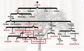 Regular Family Tree