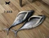 Zapatillas pez
