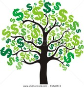 Buy your Money Tree now! Endless possibilities!