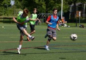 Pulse Sports Camps