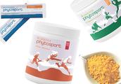 PhytoSport