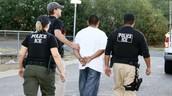 Arrest of Immigrants