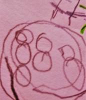 insieme di palline - anni 5