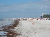 Enjoy a natural day at the beach!