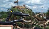 The Black Anaconda