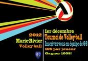 Jouer avec votre équipe dans une journée fantastique de volleyball!
