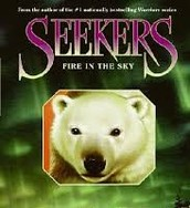 Seekers Fire In The Sky