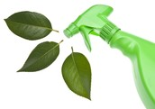 Top to Bottom Eco-Friendly Cleaning-Your home will sparkle!