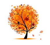 IFW Fall Newsletter