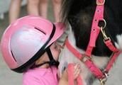 Come to Eagle Ridge Equestrian Center @ Black Raven Stables