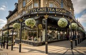 opening hours for bettys and taylors of harrogate